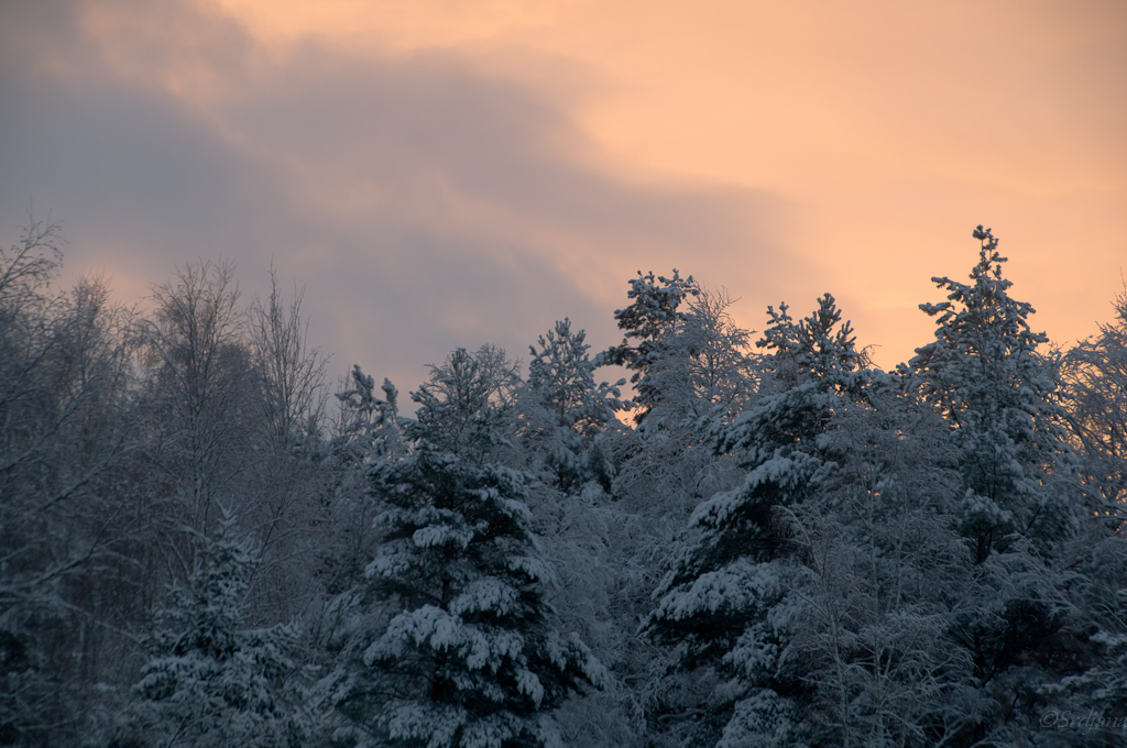 February morning